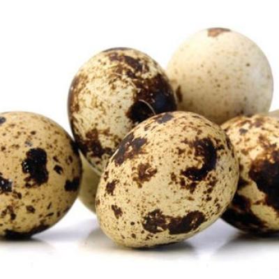 Telur Puyuh /Butir